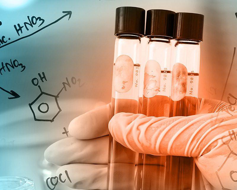 (6) Valorização de compostos bioativos provenientes de plantas aromáticas e medicinais